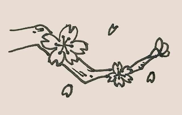 桃花简笔画的画法步骤图解教程 中级简笔画教程-第10张