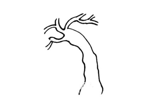 春天的柳树画法步骤 中级简笔画教程-第3张