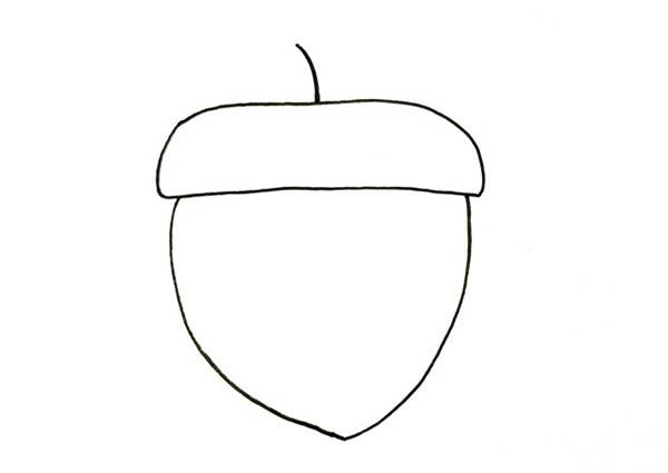 松果画法步骤,儿童简笔画松果画法 中级简笔画教程-第3张
