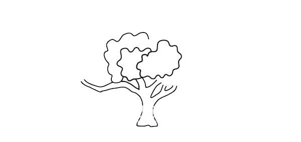 茂盛大树简笔画彩色画法图片 中级简笔画教程-第3张