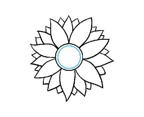 向日葵简笔画步骤图片大全 植物-第6张