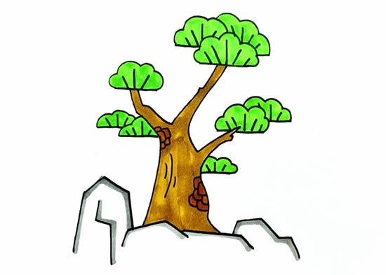 简单易学的松柏树画法步骤 中级简笔画教程-第1张