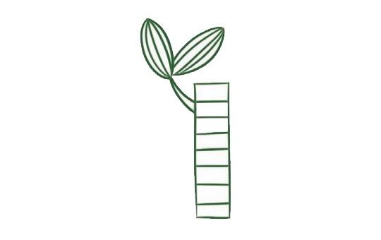 富贵竹简笔画,竹子儿童简笔画 初级简笔画教程-第3张