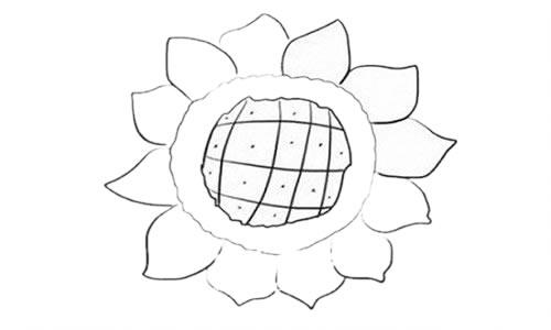 向日葵简笔画步骤图解教程 植物-第4张