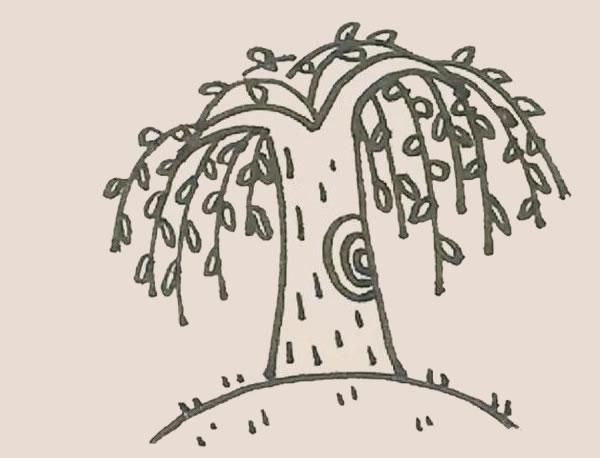柳树简笔画的画法步骤图解教程 中级简笔画教程-第8张