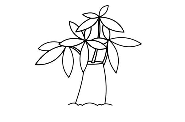 发财树儿童简笔画手绘 中级简笔画教程-第5张