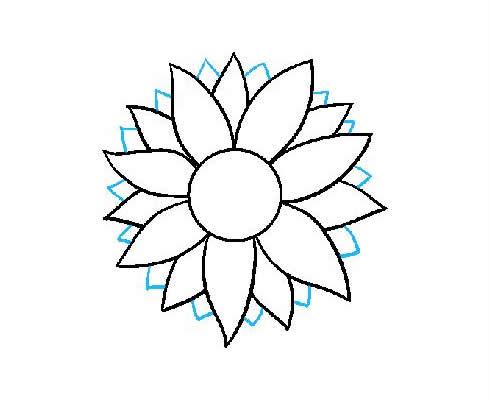 向日葵简笔画步骤图片大全 植物-第5张
