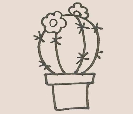 仙人球花简笔画步骤图解教程 中级简笔画教程-第8张