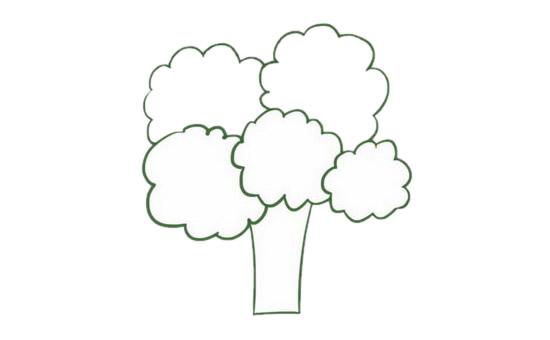 果树简笔画的画法步骤图解教程及图片大全 植物-第4张