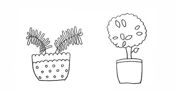 两盆漂亮的盆栽简笔画彩色画法步骤图教程 植物-第9张