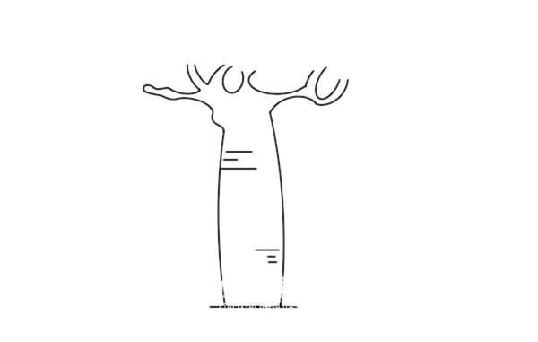 面包树简笔画画法步骤图片 中级简笔画教程-第2张
