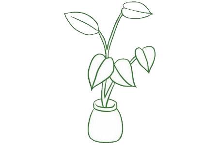 绿萝简笔画画法,绿色植物简笔画 中级简笔画教程-第6张