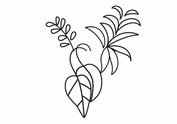 简单好学的吊兰盆栽简笔画 中级简笔画教程-第3张