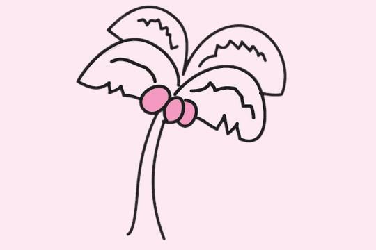 椰树简笔画简单画法 植物-第1张