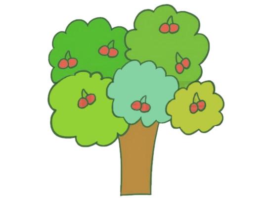 果树简笔画的画法步骤图解教程及图片大全 植物-第6张