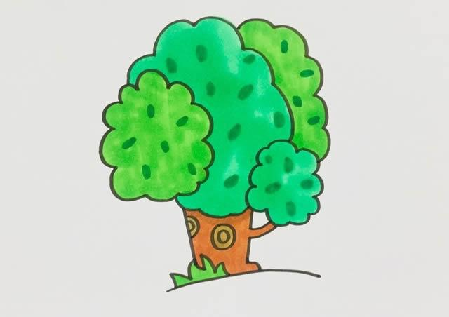 漂亮的大树简笔画画法 中级简笔画教程-第1张