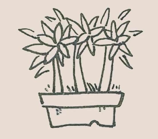 盆栽简笔画彩色画法步骤图解教程 初级简笔画教程-第5张