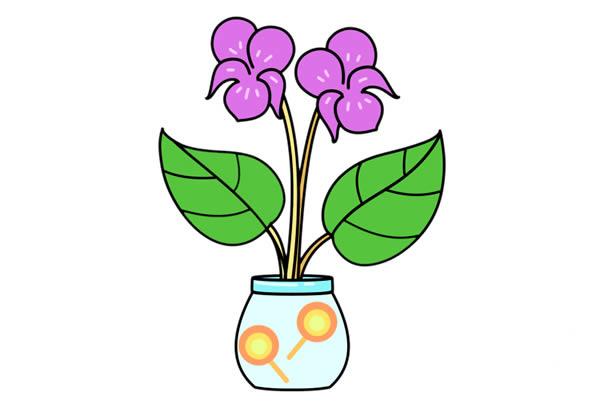 紫罗兰盆栽简笔画彩色画法步骤图片 中级简笔画教程-第1张