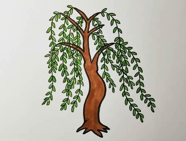 柳树画法步骤,柳树彩色画法 中级简笔画教程-第6张