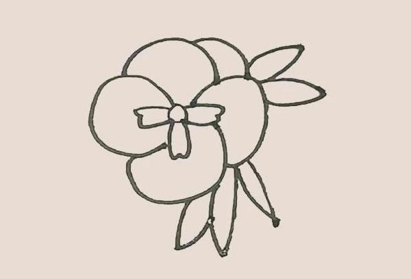 三色堇花朵简笔画的画法 中级简笔画教程-第6张