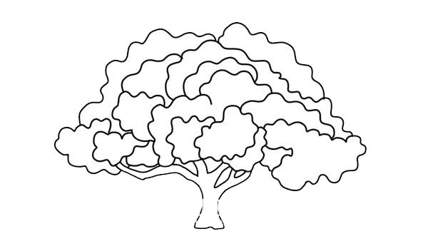 茂盛大树简笔画彩色画法图片 中级简笔画教程-第5张