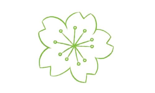 樱花简笔画的画法步骤教程及图片大全 植物-第3张