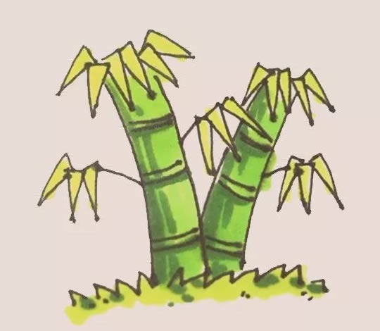 竹子儿童手绘简笔画教程 中级简笔画教程-第1张