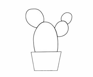 简单的仙人掌简笔画步骤 初级简笔画教程-第4张