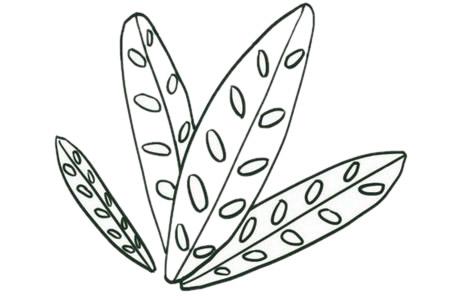 绿色植物儿童简笔画教程 初级简笔画教程-第4张