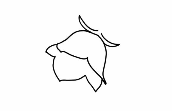 彩色花朵简笔画画法教程 中级简笔画教程-第3张