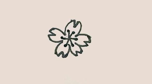 桃花简笔画的画法步骤图解教程 中级简笔画教程-第5张