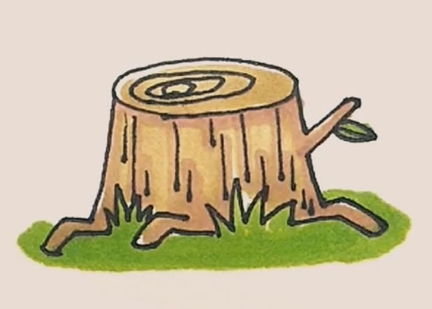 树桩简笔画的画法 初级简笔画教程-第1张