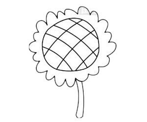 向日葵简笔画简单画法步骤教程及图片大全 植物-第5张