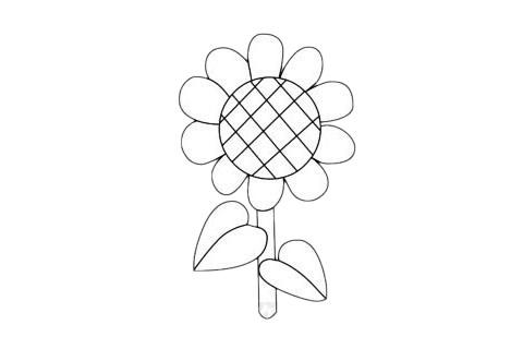 向日葵简笔画简单画法步骤教程及图片大全 植物-第7张