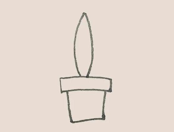 虎皮兰简笔画,盆栽简笔画画法 中级简笔画教程-第4张