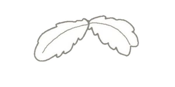 椰子树简笔画的画法步骤图教程 植物-第2张