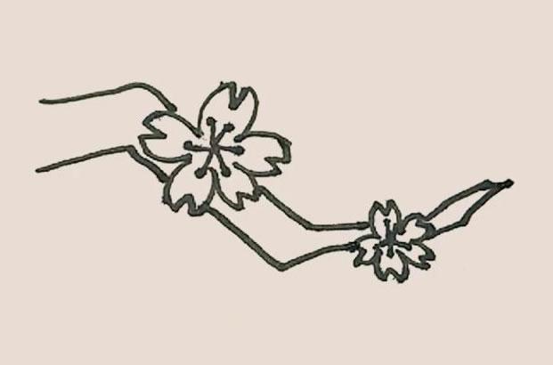 桃花简笔画的画法步骤图解教程 中级简笔画教程-第8张