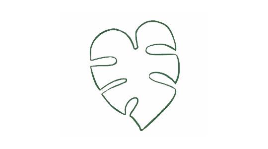 龟背竹简笔画,绿色植物儿童简笔画 初级简笔画教程-第2张