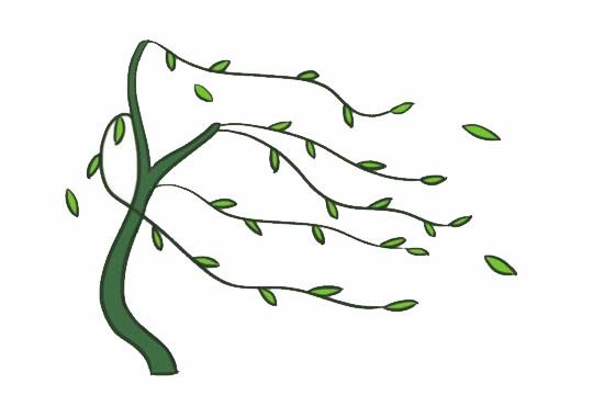 柳树简笔画的画法,简单的柳树画法 初级简笔画教程-第6张