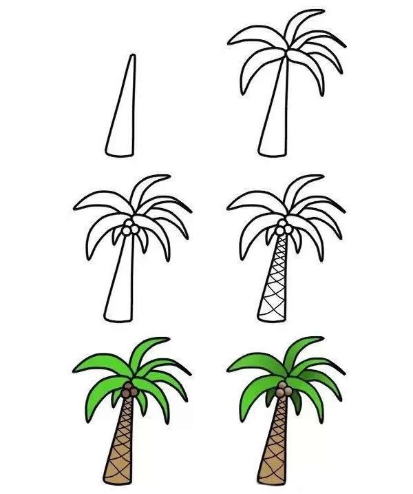 简单几步画法椰树简笔画步骤图片 植物-第1张