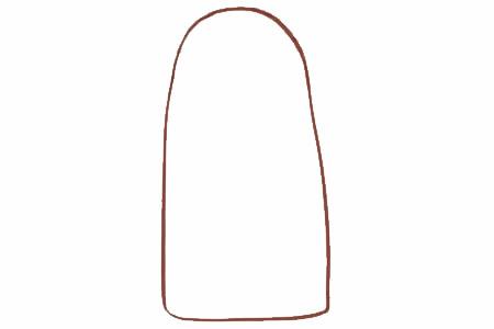面包树简笔画画法步骤 中级简笔画教程-第2张