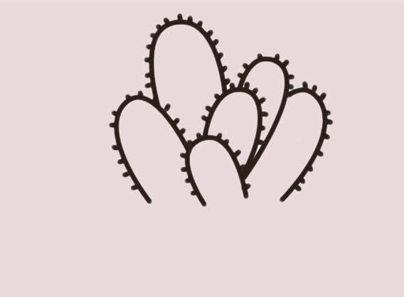 仙人掌盆栽简笔画步骤 中级简笔画教程-第4张