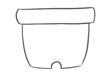 儿童简笔画仙人掌画法 中级简笔画教程-第3张