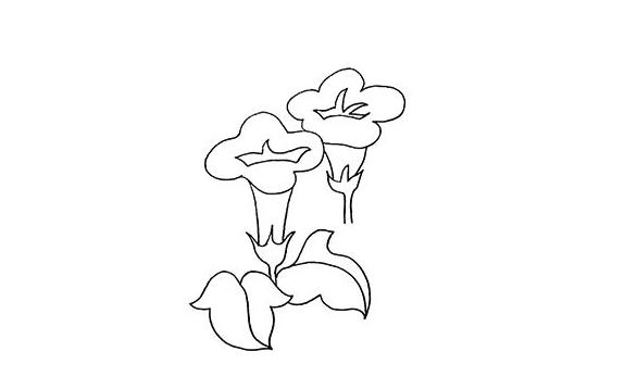 牵牛花画法步骤,牵牛花教程 初级简笔画教程-第1张
