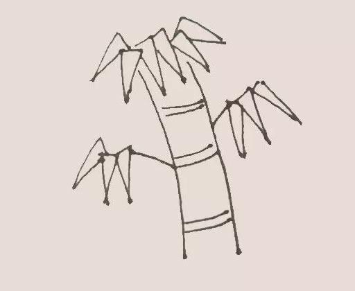 竹子儿童手绘简笔画教程 中级简笔画教程-第5张
