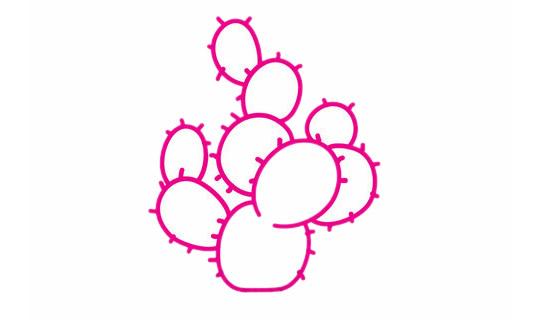 仙人球简笔画分步骤画法 初级简笔画教程-第1张