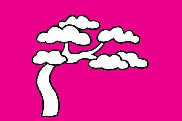 松树画法步骤 松树简笔画步骤教程及图片大全 植物-第9张