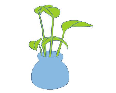 绿萝简笔画画法,绿色植物简笔画 中级简笔画教程-第12张