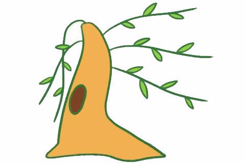 柳树简笔画的画法,简单的柳树画法 初级简笔画教程-第1张