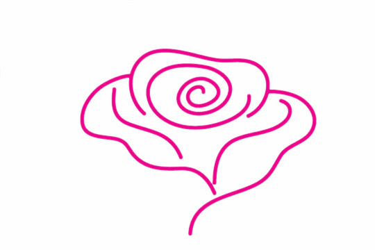 玫瑰花简笔画的画法步骤 中级简笔画教程-第5张